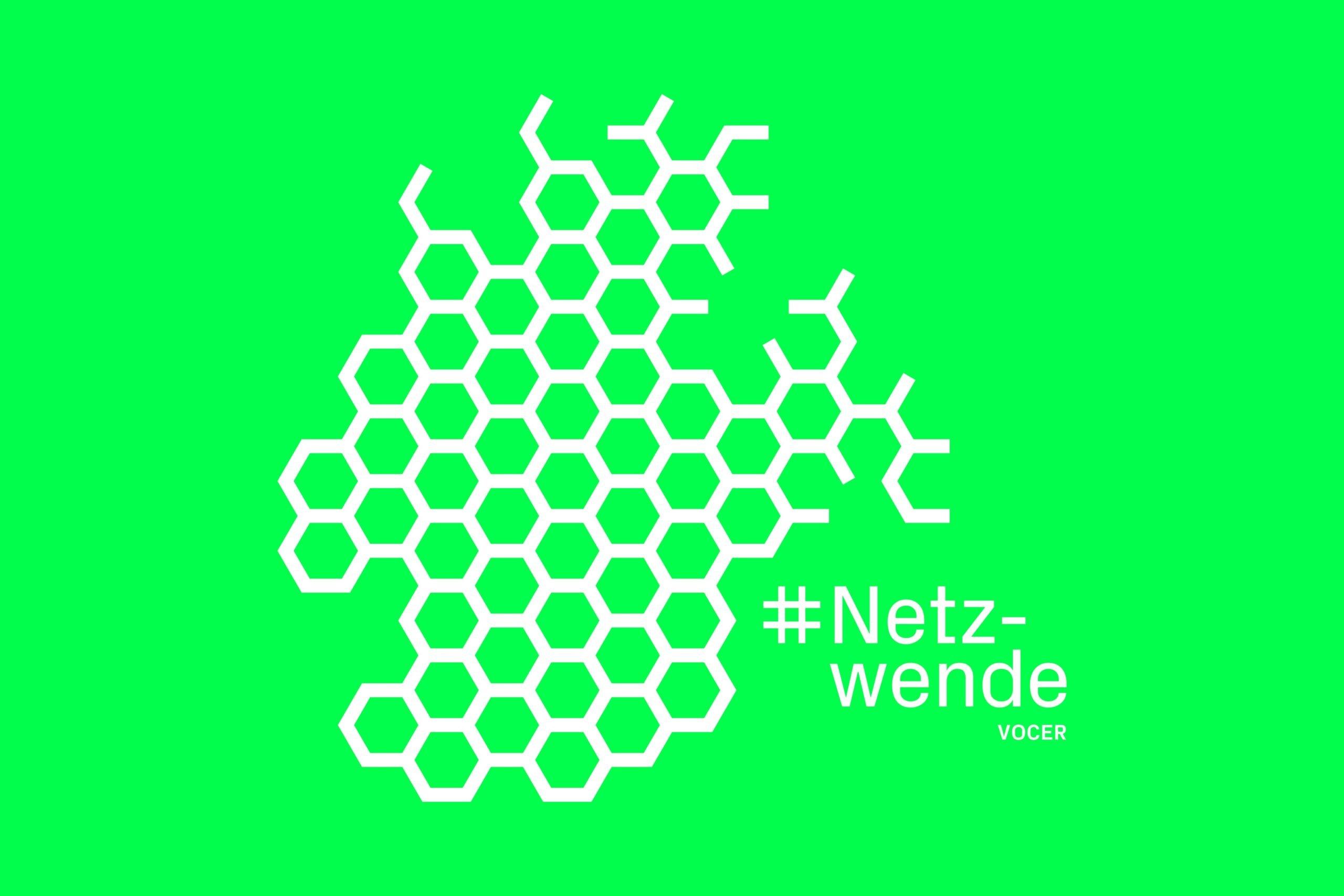 Logo des Netzwende Awards